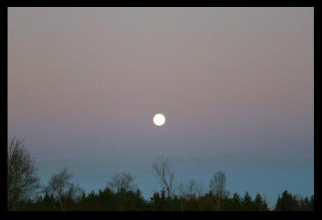 kuu-pilt.jpg